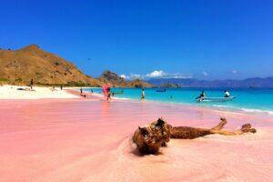 Der Pink Beach in Lombok