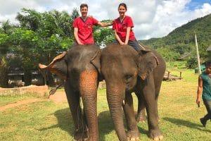 Verena und Matthias beim Elefantenreiten